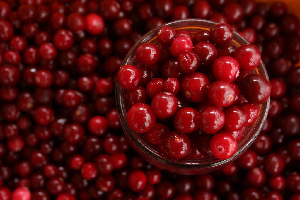 The main useful properties of cranberry juice.