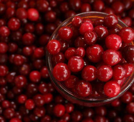 Health Benefits of Cranberry Juice